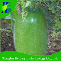 Early-maturing hybrid Chinese winter melon for gardens