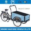 heavy duty cargo tricycle / Nanyang UB9027