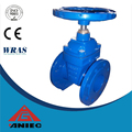 Double flange resilient seated gate valve passed water leak detection