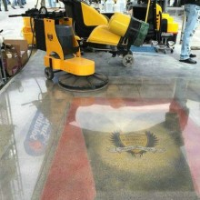 C8 Cost-Effective Floor Polisher Available for Sale or Rental
