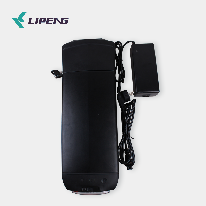 LiPeng electric bike 36v 48v lithium battery