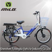 china india Japan Korea Long range high performance good quality electric bicycle