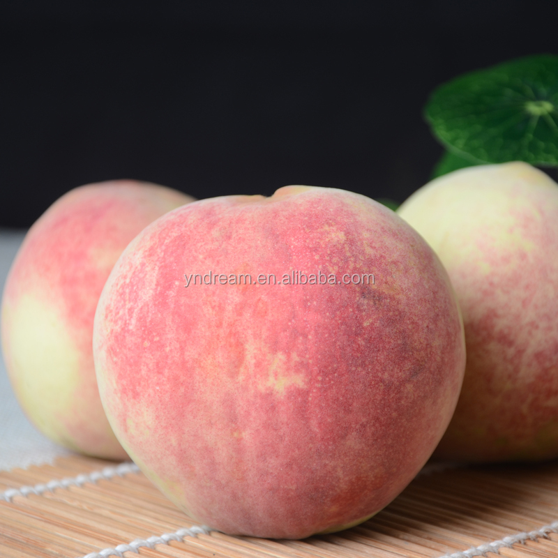 High Quality Fresh Wild Peach With Sweet And Honey Flavour From China