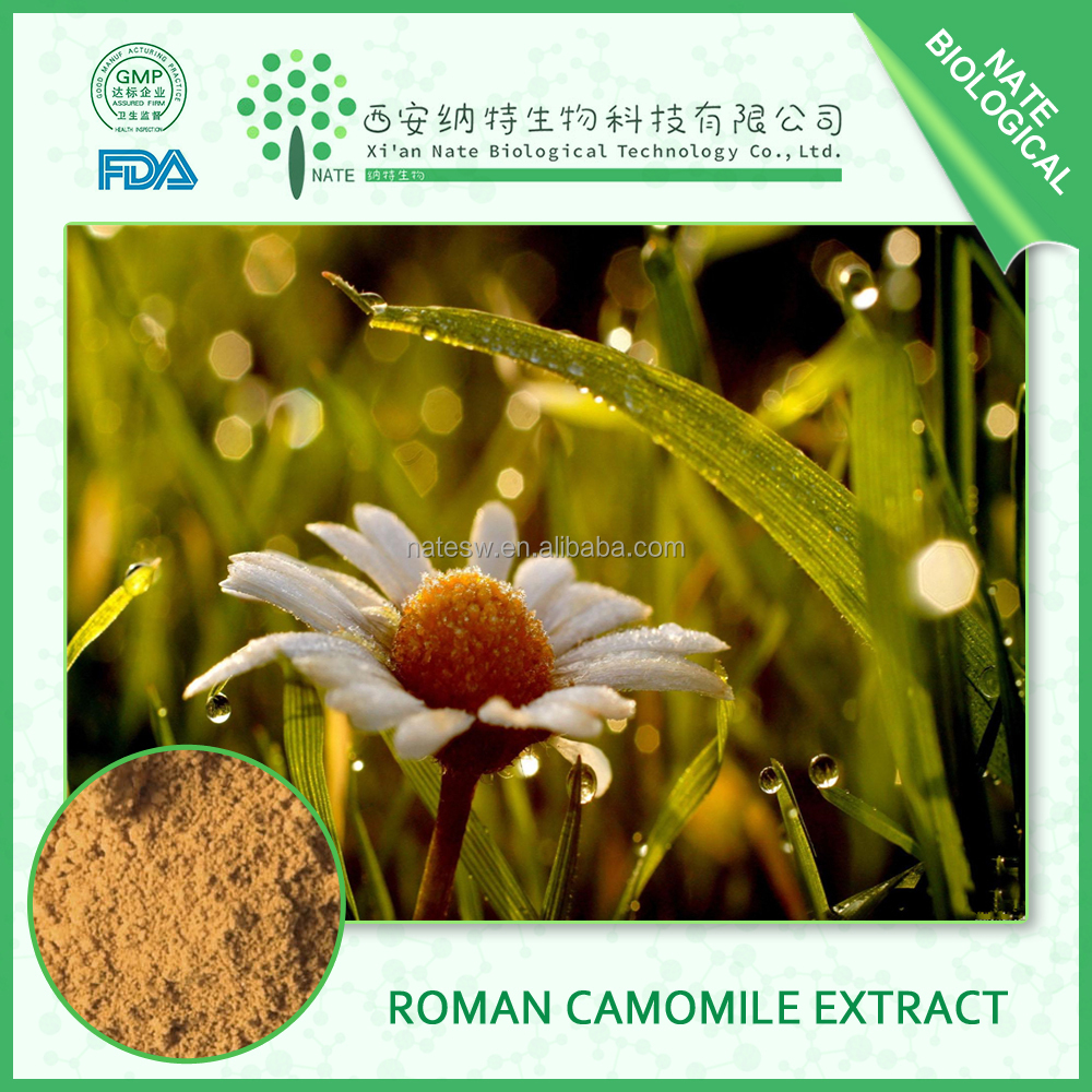 Factory Supply Chamomile Flowers Extract 4:1 Apigenin and Chamomile Powder