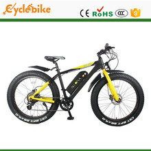 Professional foldable e-bike with high quality