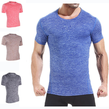 Summer clothing polyester and spandex standard dri fit shirts wholesale ,bulk gym sport t shirt in clothing manufacture