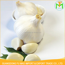 Competitive Price Per Ton Healthy New Crop Organic Good Farmer Nature Growing Fresh Garlic