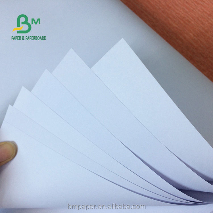 Supply 70gsm 75gsm 80gsm Copy Paper Jumbo Roll for Published