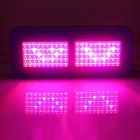 Buy Forum 420 Magazine Recommended The Best 5 Watt LED Grow Light ...