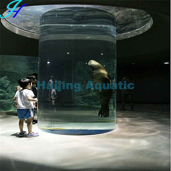 Haijing Acrylic Asian Arowana for Sale
