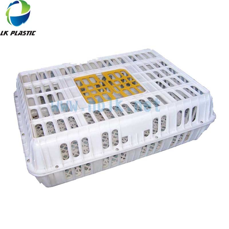 Hot Sale poultry Chicken Transport Stackable Cage/box