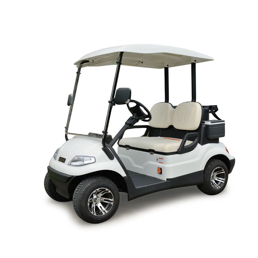 Cheap Two Seaters Electric Mini Golf Car Buy 2 Seater