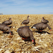 china hunting decoys specklebelly inflatable decoys goose hunting decoys