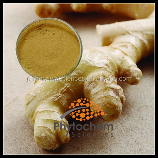 Ginger extract for hair salon protect
