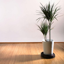 Eco- Friendly Bamboo And Cork Flooring Natural Color