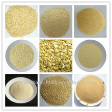 bulk dried/dry/dehydrated garlic granules granulated /minced/chopped garlic ISO,HACCP,QS,KOSHER,HALAL,FDA