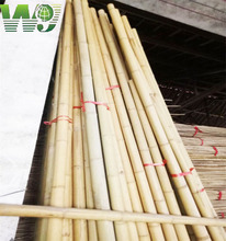 Wy-J125 natural treated bamboo poles for trees supporting