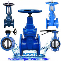 good quality din rising stem gate valve