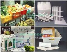 PP Coroplast Plastic Folding Box/Container