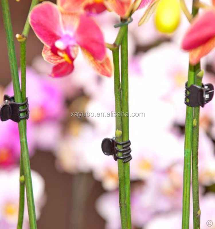 Wholesale china factory black plastic butterfly orchid support clip for nursery plant