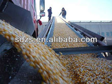 yellow corn animal feed distributors with good quality products