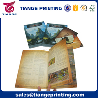 Cheap Custom Game Booklet,Flyers,Coloring Instruction Book,Brochure Printing