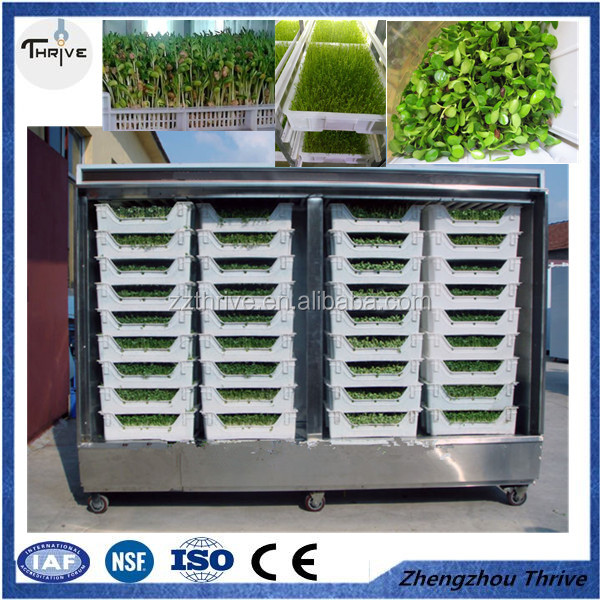 Good quality bud seeding machine, barley/wheat/ oats/ maize /black bean automatic hydroponics fodder machine
