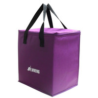 Wholesale fashionable custom non woven thermal picnic insulated kids cooler lunch bag