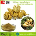 Manufacturer Supply Maca Extract Powder
