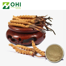 Wholesale 100% Natural Cordyceps Sinensis Extract Powder