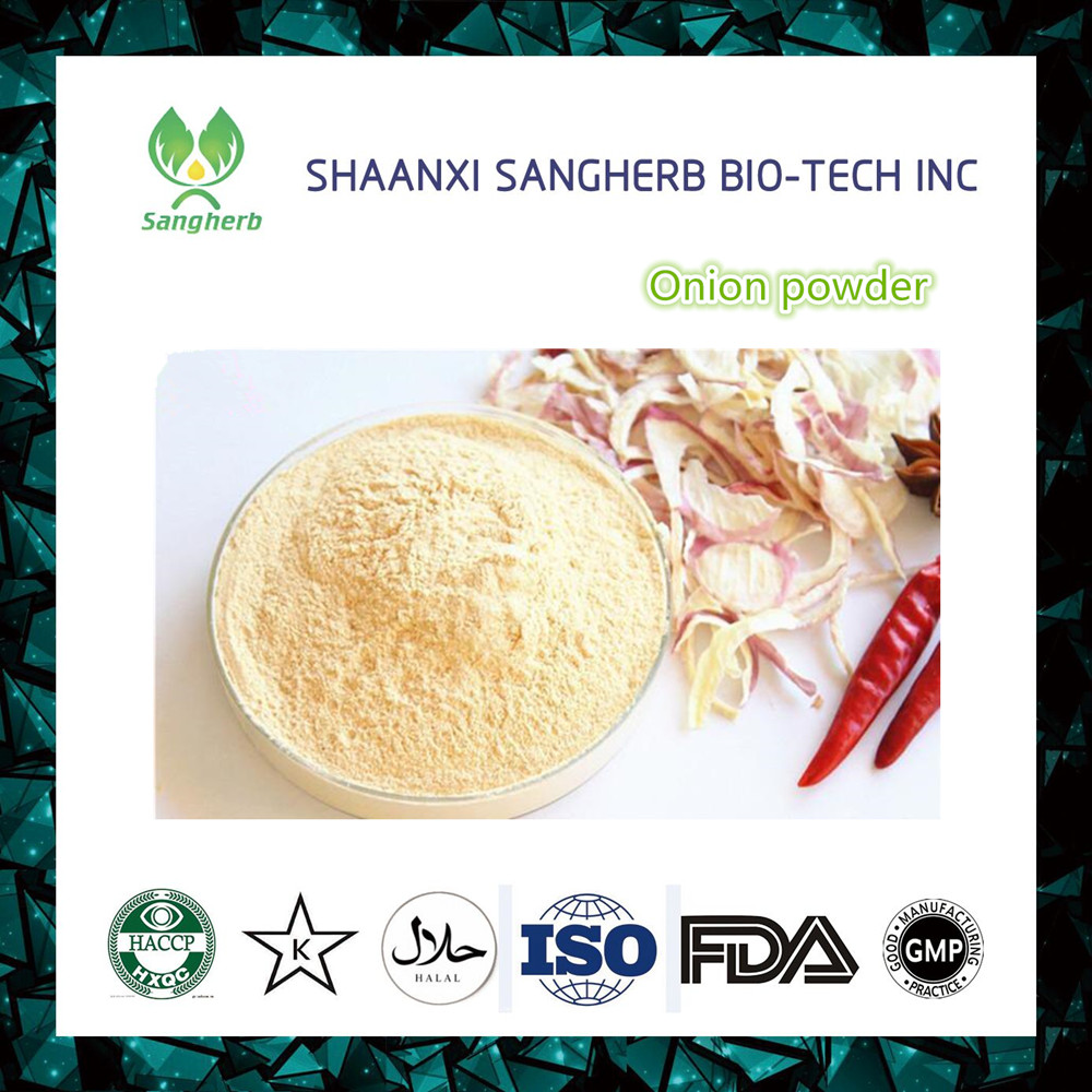 high quality onion extract powder / onion p.e. in bulk