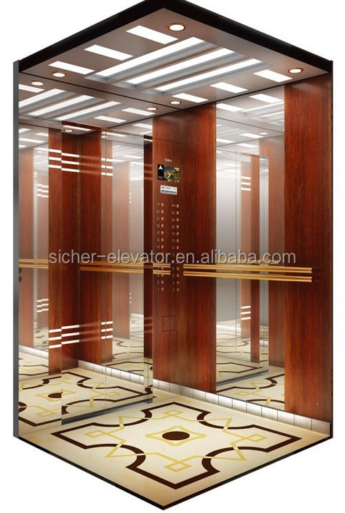 3 Persons Small Car Elevator SRH Quality Lift Passenger Elevators in China