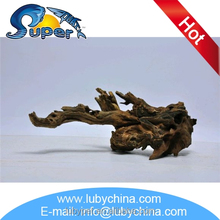 High quality driftwood mangrove for wholesale
