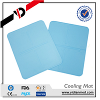 Laptop Bady Cooling Gel Cool Bed Pad