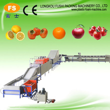 High Quality Fruit & Vegetables Washing Waxing Drying and Sorting Line