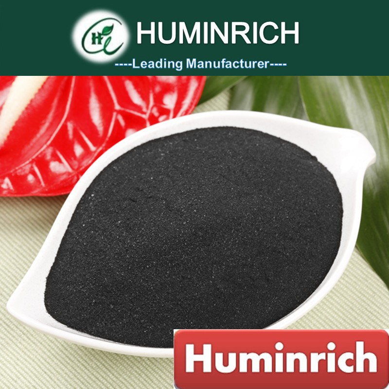 Huminrich Factory Supply 100% Pure Brown Seaweed Powder