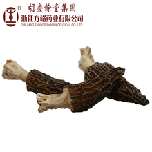 Factory direct supply Dictyophora indusiat (bamboo fungus )mushroom extract in stock