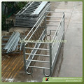 Cattle feeding panels