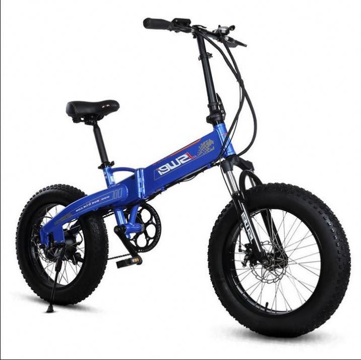 Best Selling Fast Cargo E-Bike For Sand And Snow Roads Japan