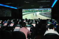 Horse racing Machine