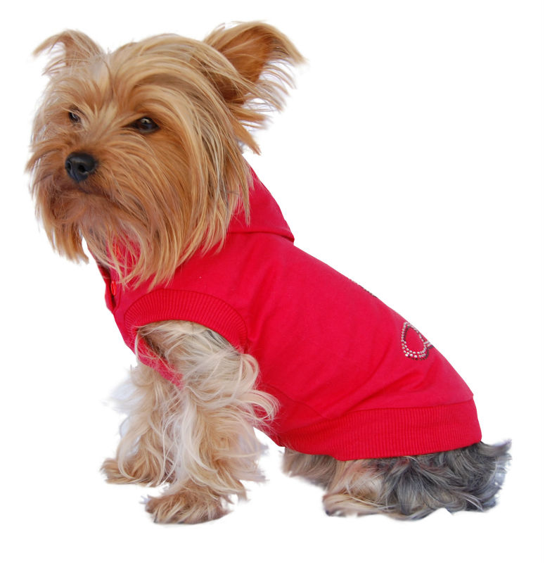 Small Dog Red Cotton Blend Stylish hoodie Pet winter coat