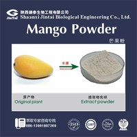 Fruit powder Food Grade Mango powder
