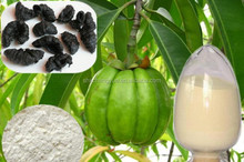 100% high quality garcinia cambogia fruit extract powder with factory price