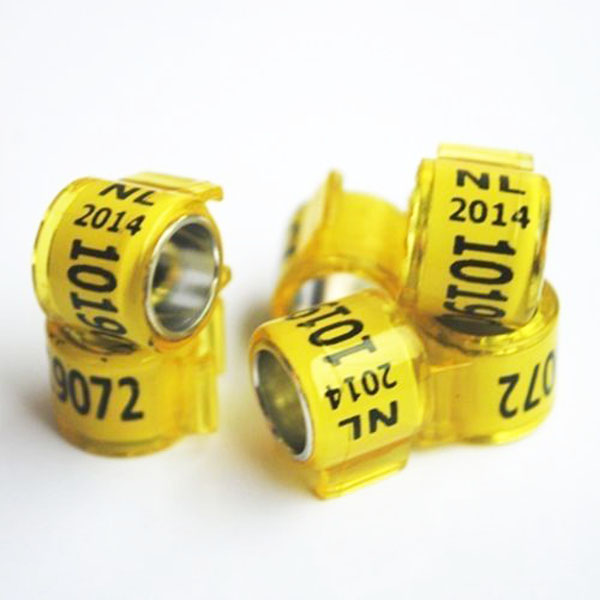 2018 New Personalize Club Ring Band Racing Pigeon Rings