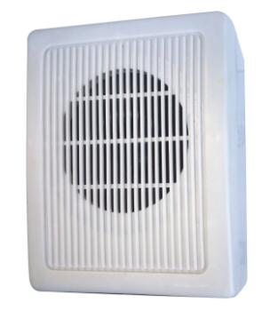 DY-813 professional China supply wall-mounted speaker mini