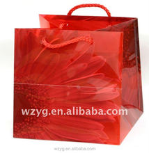 Plastic rope handle shopping bag