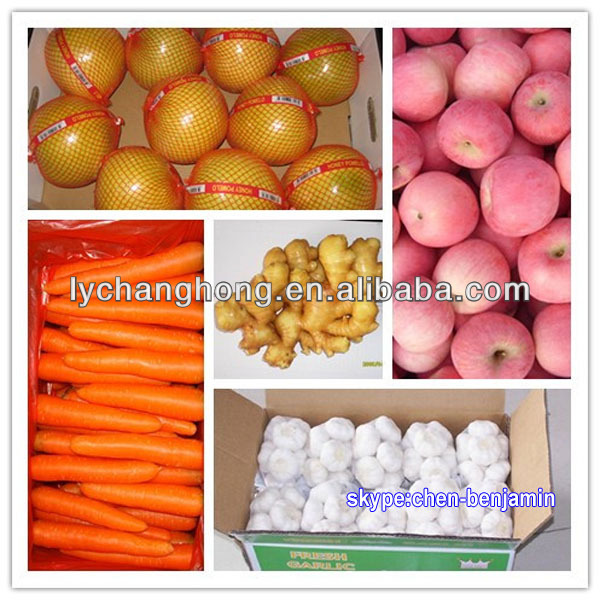 Fresh vegetable (garlic, ginger, potato, carrot) for Dubai market