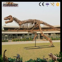 Professional dinosaur fossils model With Good Service
