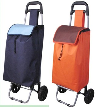 Foldable Shopping Trolley with Bag