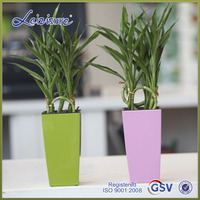 Best sell good quality selfwatering home decoration plastic flower pot (PQ5)
